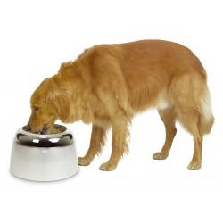 Erhöhter Futternapf für große Hunde - 2,5 Liter