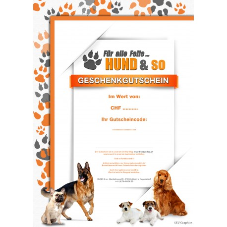 Geschenkgutschein -  CHF 250.00