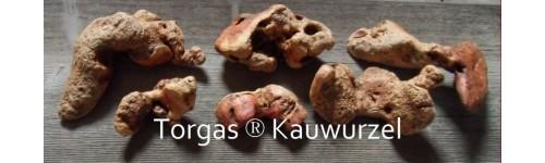 Torgas® Kauwurzel